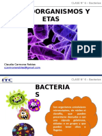 Clase 6- Bacterias