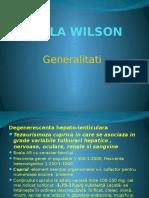 BOALA WILSON.pptx
