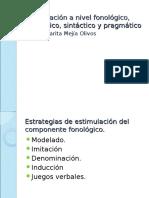 07B Estimulación en Los Diferentes Niveles Del Lenguaje