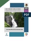 Guia para indentificar actores de proyecto.pdf