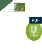 Final of Unilever