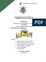 Estructura de Proyecto Final Original1