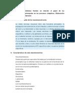 Anatomia y Fisiologia Tarea 2