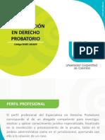 Especializacion Derecho Probatorio