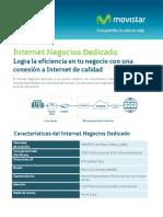 Internet Negocios (1) (1) (1)
