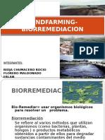 Landfarming Biorremediacion 141127204937 Conversion Gate01