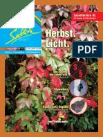 Seeblick print 3/2016 - Herbstausgabe