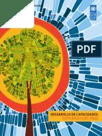 Capacity Development a UNDP Primer Spanish
