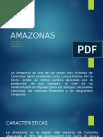 AMAZONAS.pptx