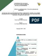 Diapositivas-Chikungunyaa
