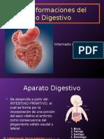 Malformaciones El Tubo Digestivo 2modif