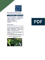 Desintoxicación Con Plantas Medicinales (1)