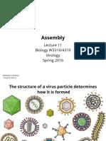 Assembly Viruses