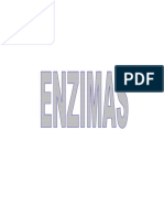 enzimas 2