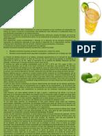 Implementacion de una planta de elaboracion de gaseosas Ginger