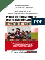 Proyecto de Investigacion Accion Informe Final 2013 Elva