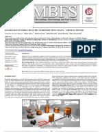 jmbfs-0897-borges I.pdf