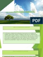 Contaminacion Ambiental(Scribd)