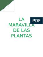 La Maravilla de Las Plantas