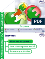 Bio Enzymes Boardworks