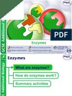 Bio Enzymes Boardworks