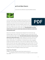 Chlorophyll Sebagai Darah Hijau Manusia1