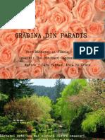Gradina Din Paradis