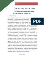 DISENO_DE_POLIDUCTO_CON_LOOP_TRAMO_YACUI.docx