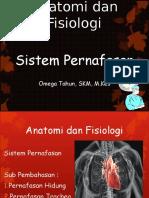 Anatomi Dan Fisiologi Pert