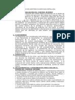 Proceso de Auditoria Planificada Detallada