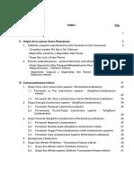 Potencial de Hidrocarburos Paraguay Tomo I Indice