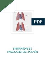 Enfermedades Vasculares Del Pulmón y Diagnósticos de Enfermería