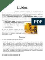 Lipidos I (Copia)