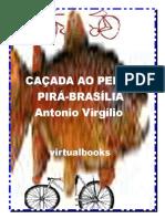 CAÇADA .pdf