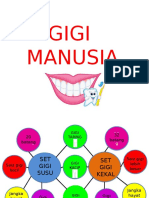 Gigi Manusia (1)