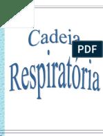00709 - Cadeia Respirat¢ria.pdf