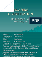 ACARINA CLASIFICATION