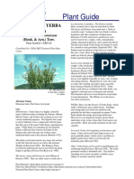 jurnal eriodictyon.pdf