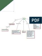 Mapa Conceptual Wiki