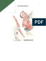 Anatomia Humana Mªgermana 2008
