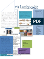 Informe Del Ascaris Cmc