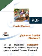 COMITES ELECTORALES UPLA