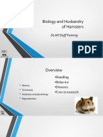 Biology and Husbandry of Hamsters