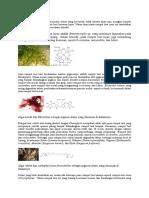 pigmen pada alga(rumput laut).docx
