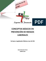Biblia Prevencion de Riesgos.pdf