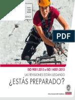 ISO 90012015_GUIA