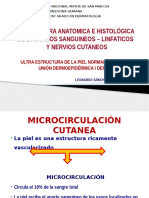 Vasos Nervios Ultraestructura.pptx