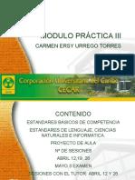 ESTANDARES BASICOS DE COMPETENCIA.pptx