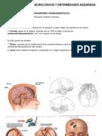 CAP 14_TR NEURO Y ENF ADQUIRIDAS.pdf