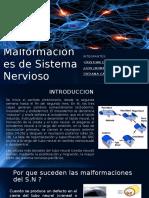 Malformaciones de Sistema Nervioso